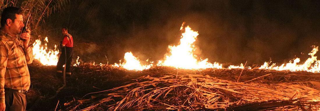 آتش به جان تالاب بین المللی انزلی افتاد ؛ حریق عمدی بود ، تصاویر تلخ نیزارهای سوخته زیباترین مناظر آبی گیلان