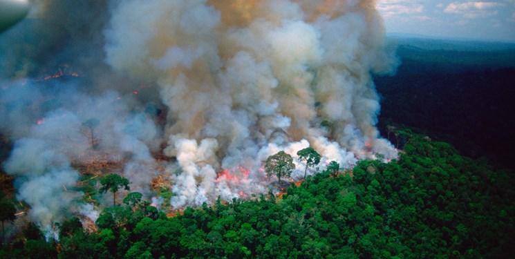 انتقاد برزیل از اظهارات ماکرون درباره آتش سوزی جنگل های آمازون
