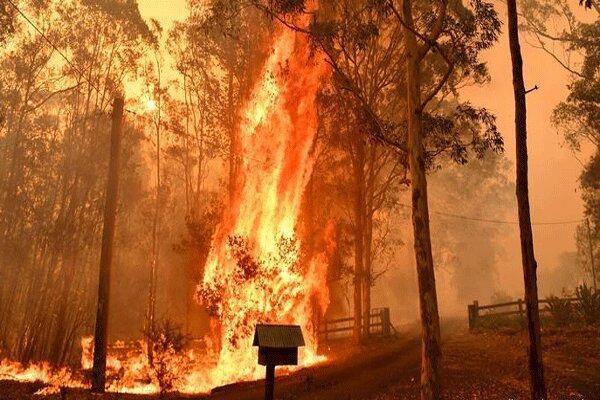 کوشش گسترده برای مهار آتش سوزی های استرالیا