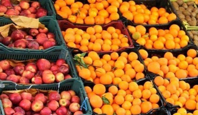 خبرنگاران توزیع یکهزار تن پرتقال و سیب شب عید در مازندران آغاز شد