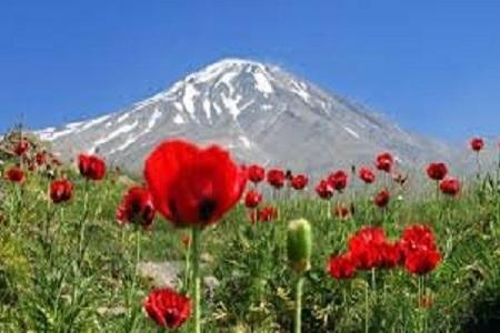 ابهام در موضوع واگذاری بخشی از کوه دماوند، نامه نگاری محیط زیست با رییس دستگاه قضا
