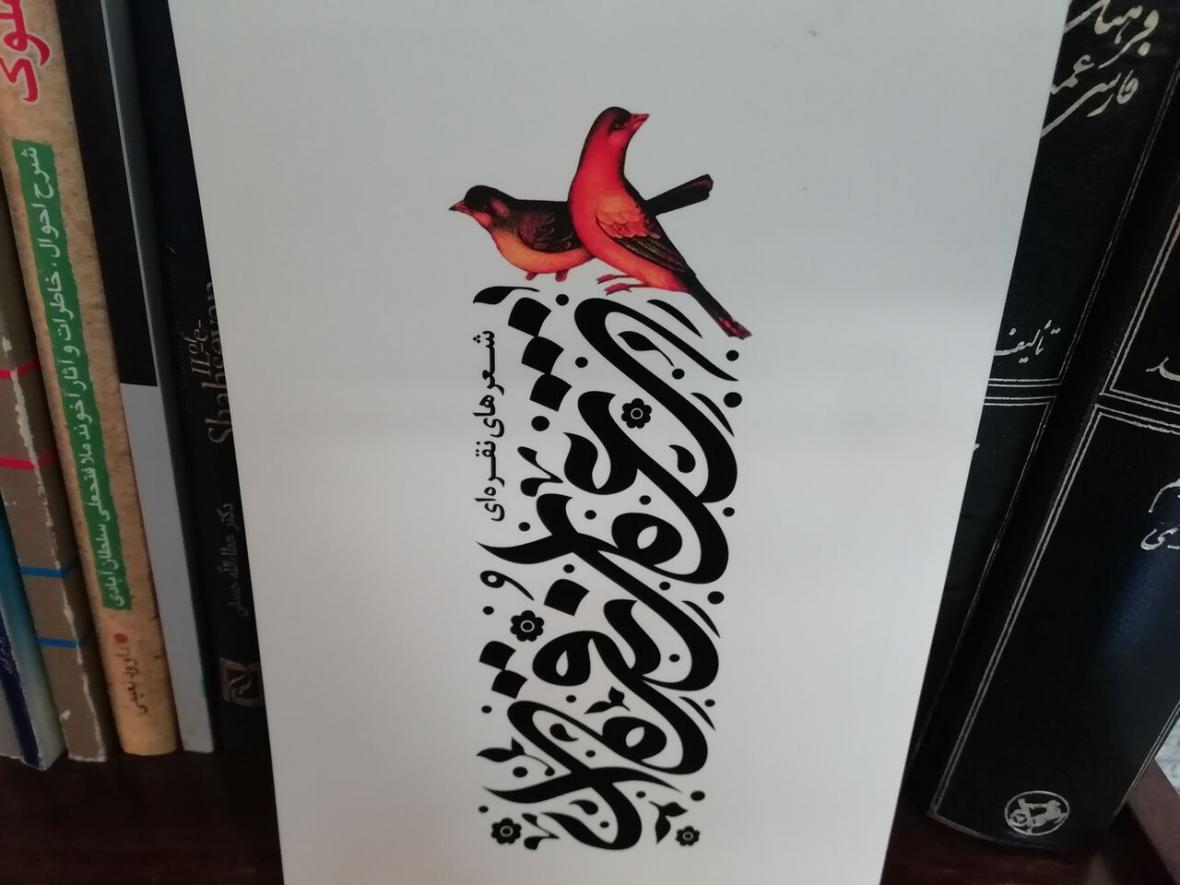 خبرنگاران منتخبی از اشعار شاعران جوان استان مرکزی در کتاب شعرهای نقره ای