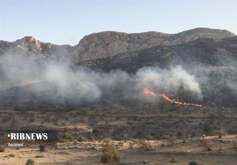 مهار آتش در منطقه حفاظت شده بیستون