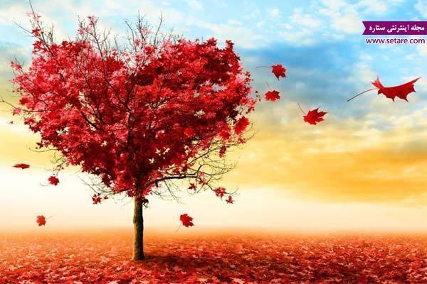 عشق یا ترحم؟ احساس خود را شناسایی کنید