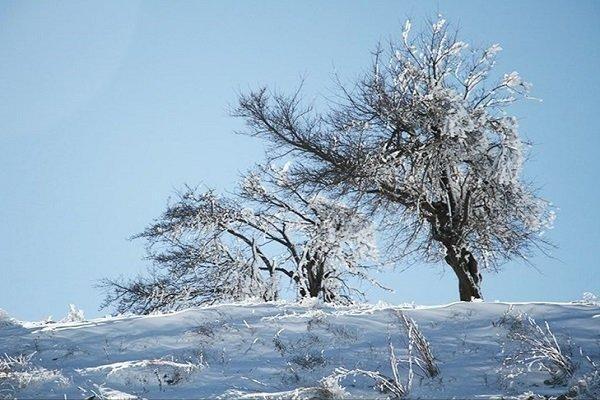 نفوذ سامانه سرد از امروز در اغلب نقاط کشور