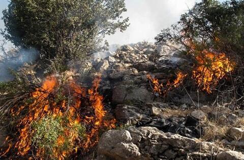 مهار آتش سوزی در کوه رنج ممسنی فارس